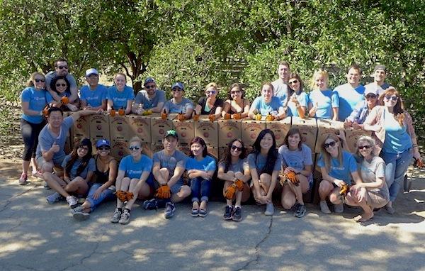 The Honest Company Volunteers at Food Forward