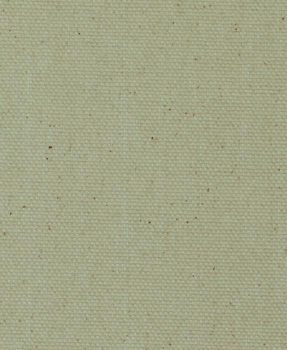 Sage Green Canvas