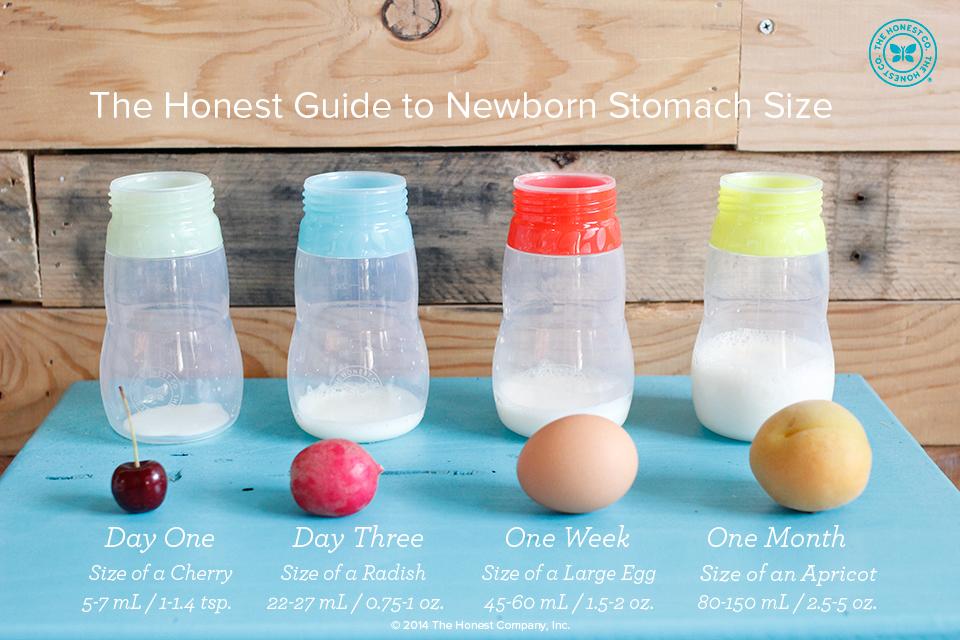 THC-Newborn-Stomach-Guide_FINAL